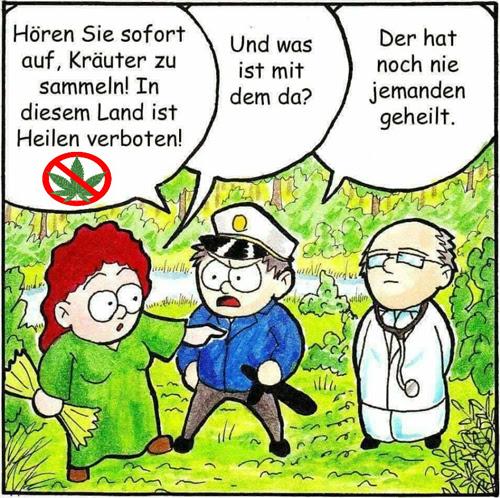 Heilkräuter sammeln verboten