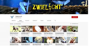 "YT-Screenshot ""Zwielicht"" Kanal"