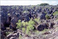 Mondlandschaft auf Nauru